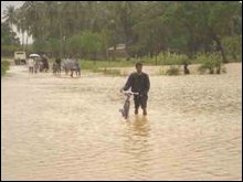 Floods displace thousands in Vanni again