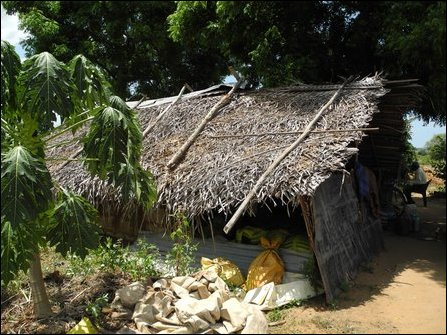 Uprooted Tamils in Ampaa'rai