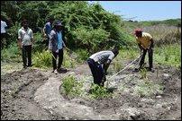 Alleged massgrave site of abandoned well at Thirukkeatheesvaram