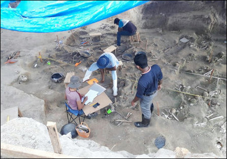 Mannaar mass grave photographed on 37th day of excavation