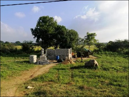 Huts put up by Sinhala settlers at Maa'lanoor