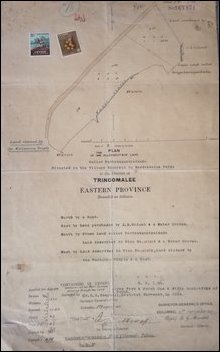 Land documents for Kanniyaa Pi'l'laiyaar temple